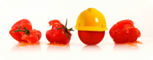 Safety in a Food Workplace